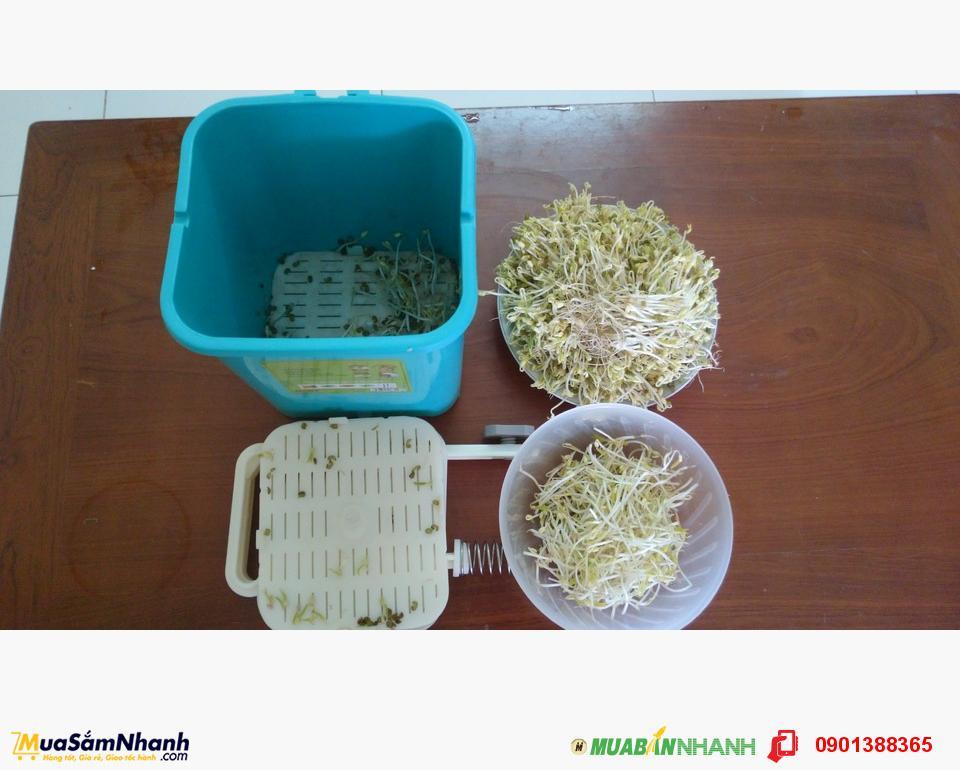 Máy trồng rau giá đỗ GV-102