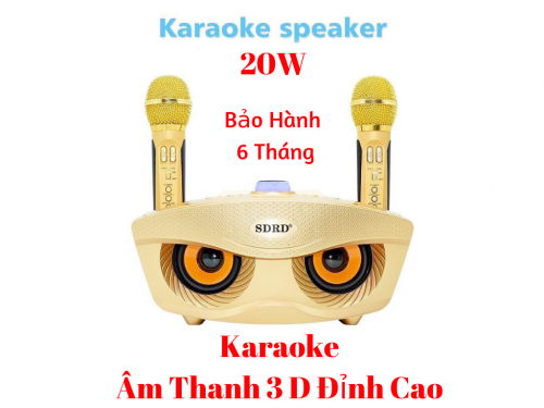 Loa Bluetooth Karaoke SD-306 Âm Thanh 3D Kèm 2 Mic