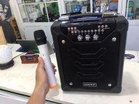 Loa kéo Bluetooth DAILE S11, Sử Dụng ngoài trời, quảng cáo, hội nghị, tiệc tùng...- Tặng Kèm Micro không dây - MSN181153