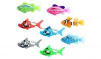 Cá bơi rô bốt màu sắc sặc sỡ