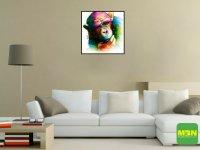 Tranh Trang Trí Treo Tường Rainbow Monkey Kích Thước 30x30 cm - MSN1831073