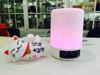 Loa Bluetooth Kiêm Đèn Ngủ RECCI RBS-E1 Hỗ Trợ Báo Thức ,Xem Giờ - MSN181258