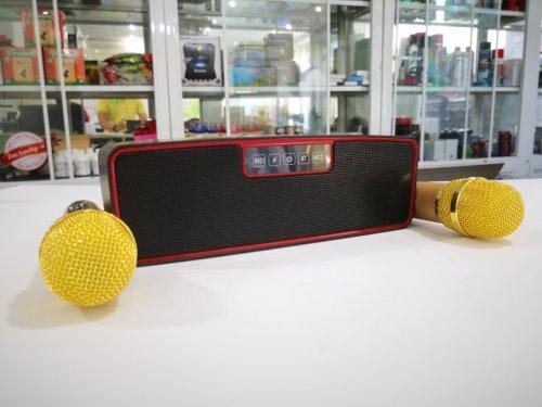 Loa Karaoke Mini ZBX-88 Kèm 2 Mic