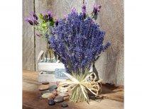 Bó Hoa Khô Lavender 200gram hương thơm sạch và tính chất đuổi côn trùng - MSN1831030