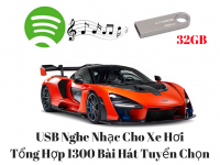 USB Nghe Nhạc Cho Xe Hơi Tổng Hợp 1300 Bài Hát Tuyển Chọn 32G - MSN388382